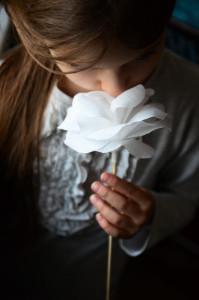 kwiaty_z_bibuly_16