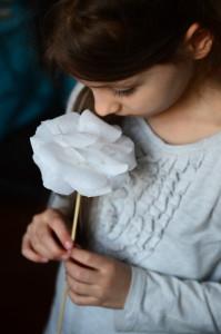 kwiaty_z_bibuly_18