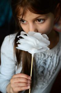 kwiaty_z_bibuly_19
