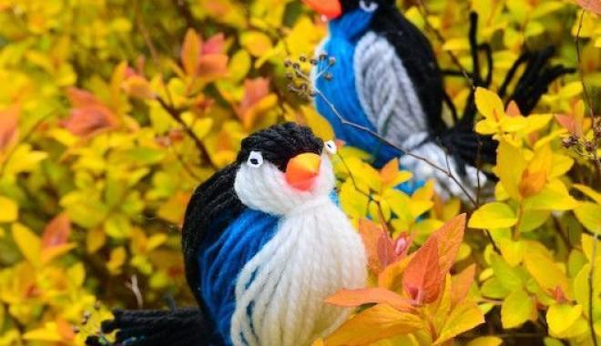 Ptaszki z wełny